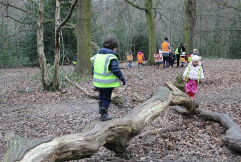 Nursery and Reception Explore in the Woods