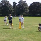 Rounders / Cricket Picnic