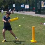 Rounders / Cricket Picnic