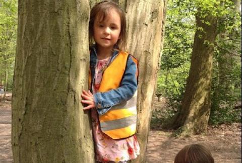 Nursery Head to Highgate Woods