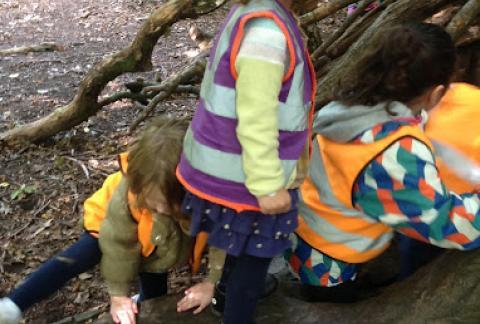 Venturing to Forest School in Nursery