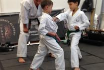 Luke & Christian's very special karate lesson